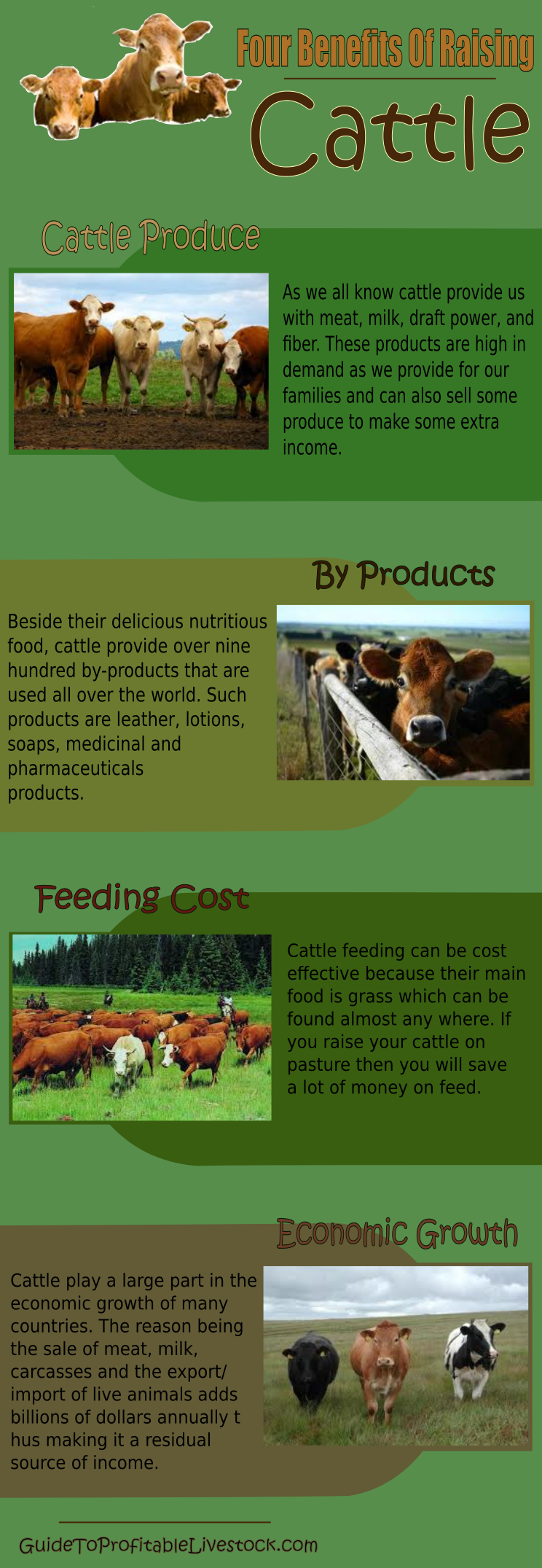 Four Benefits Of Raising Cattle