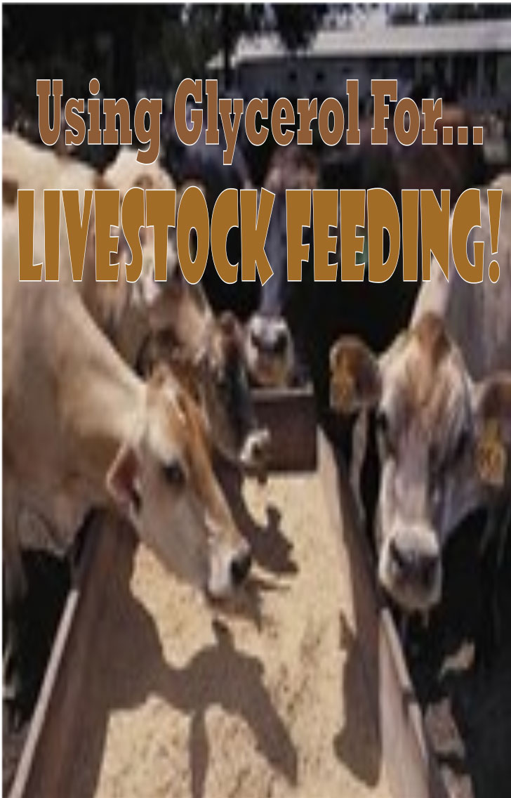 using glycerol for livestock feeding